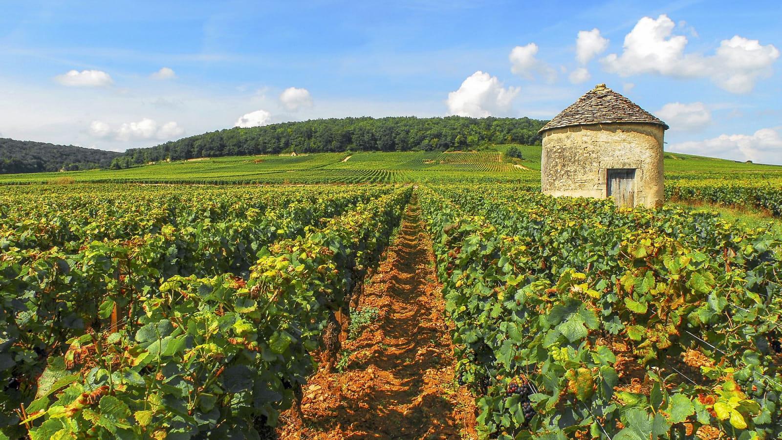 alain_doire__bourgogne-franche-comte_tourisme-cabotte-1600x900